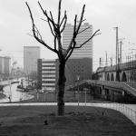 Essen-City 1977-1994 (Schwarz-Weiß)