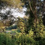Natur in Nordrhein-Westfalen